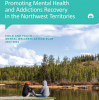 Child and Youth Mental Wellness Action Plan