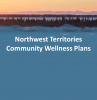 Community Wellness Plan