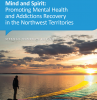 Mental Health and Addictions Strategic Plan